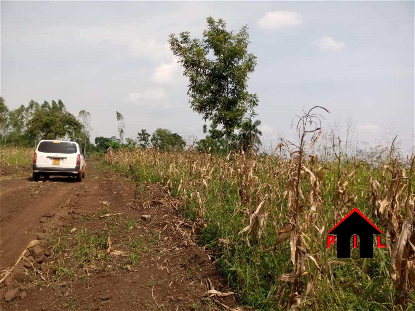 Residential Land for sale in Nakwero Wakiso