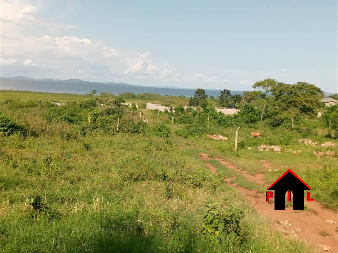 Agricultural Land for sale in Kalungu Kalungu