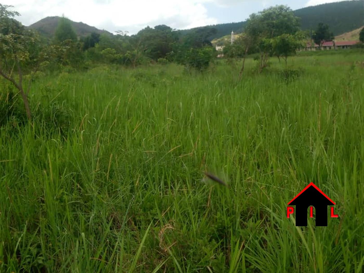 Agricultural Land for sale in Lwamata Kiboga