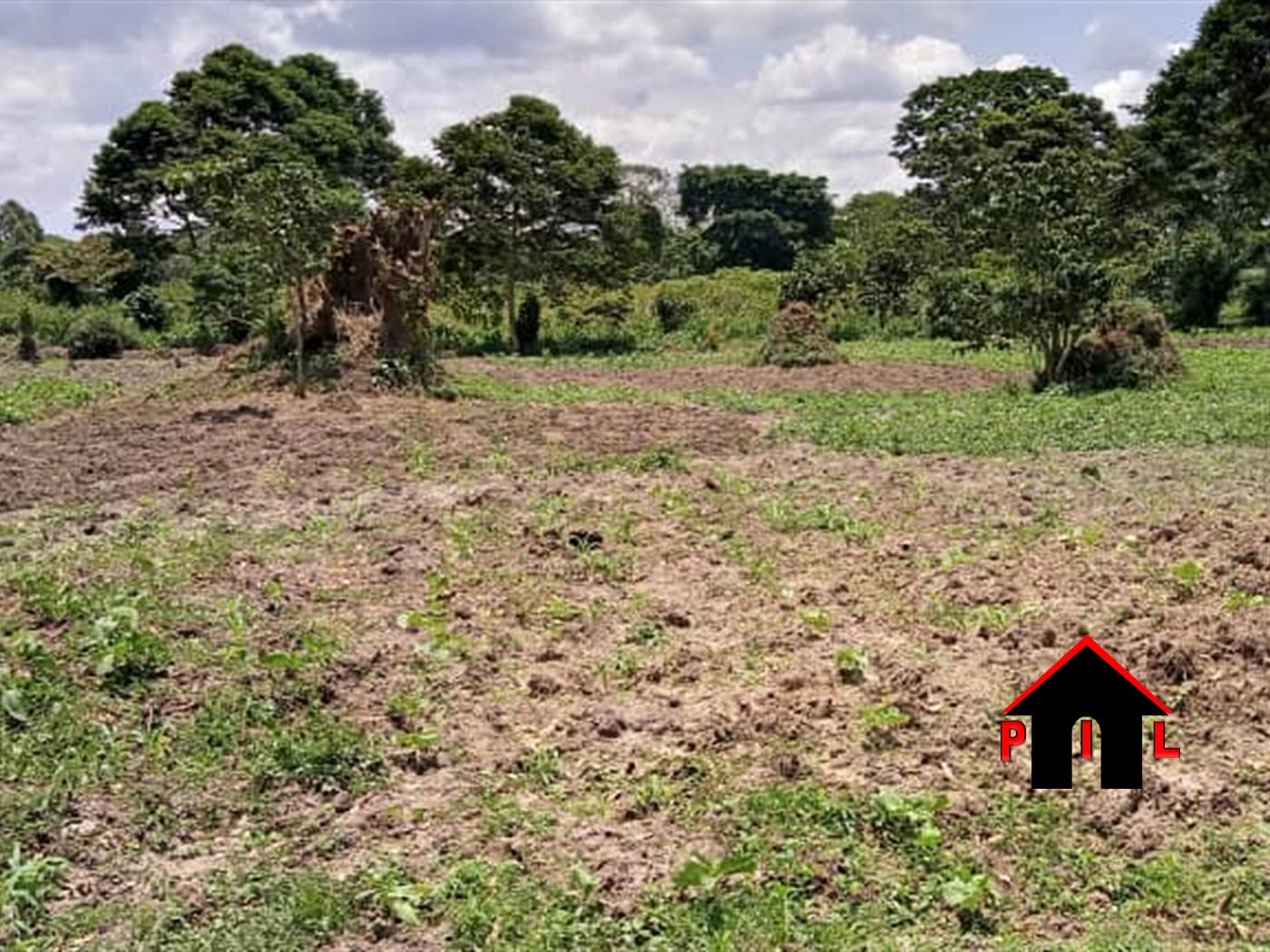 Residential Land for sale in Kiyunga Kayunga
