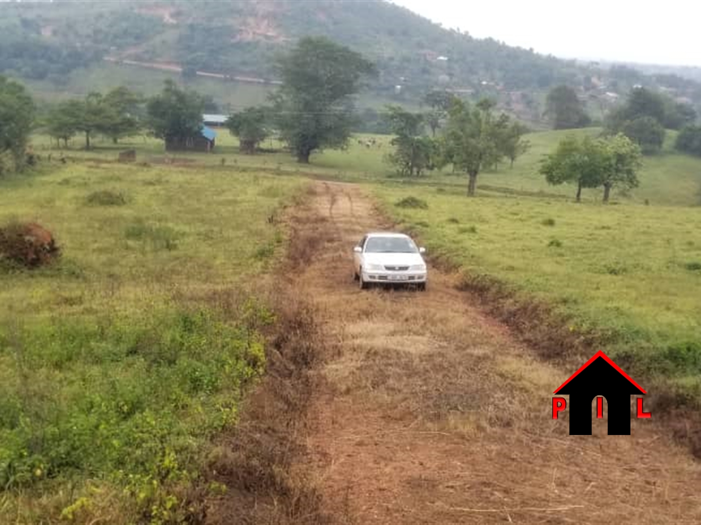 Residential Land for sale in Bukoto Kampala