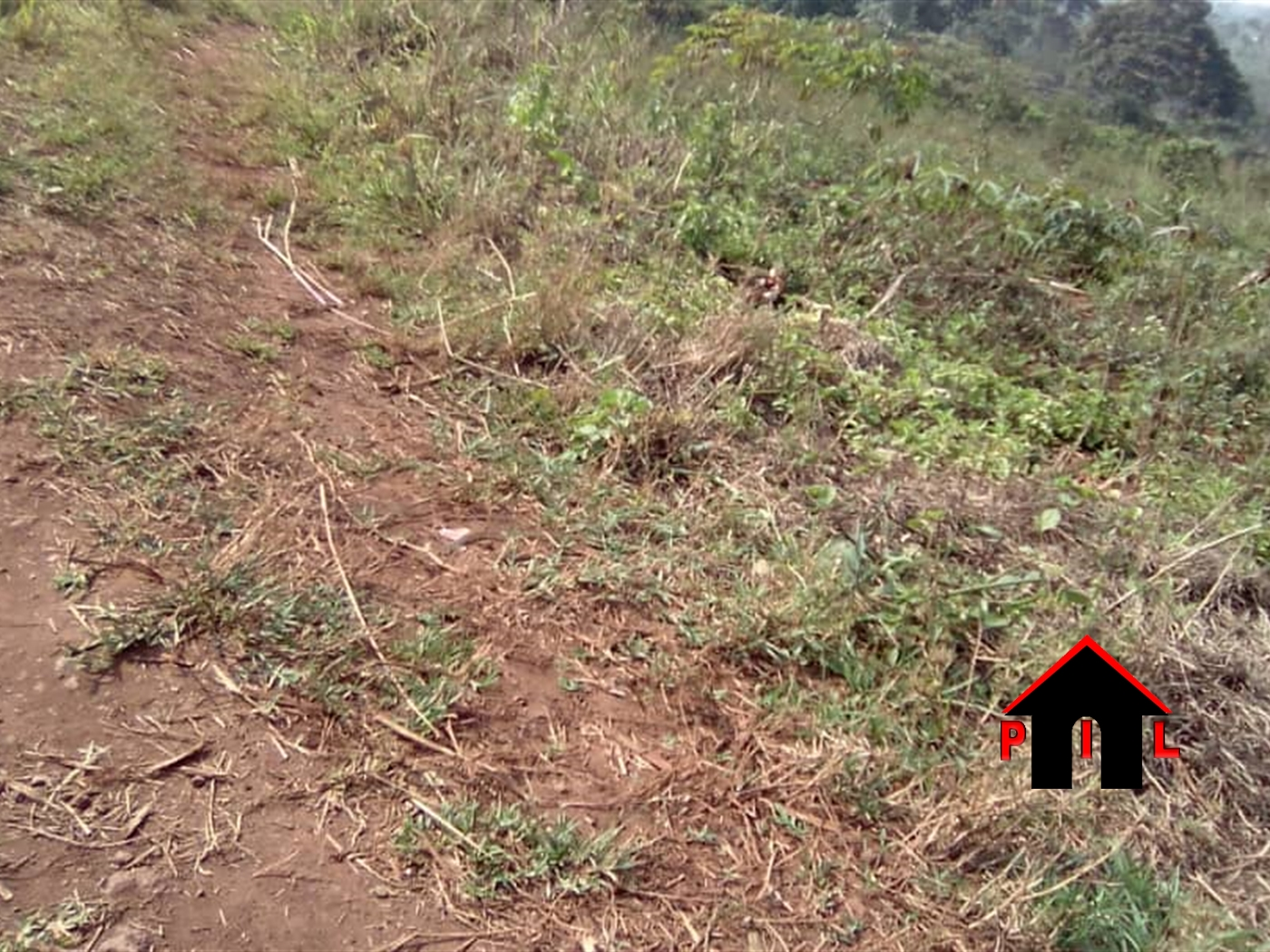 Residential Land for sale in Nakosi Mukono