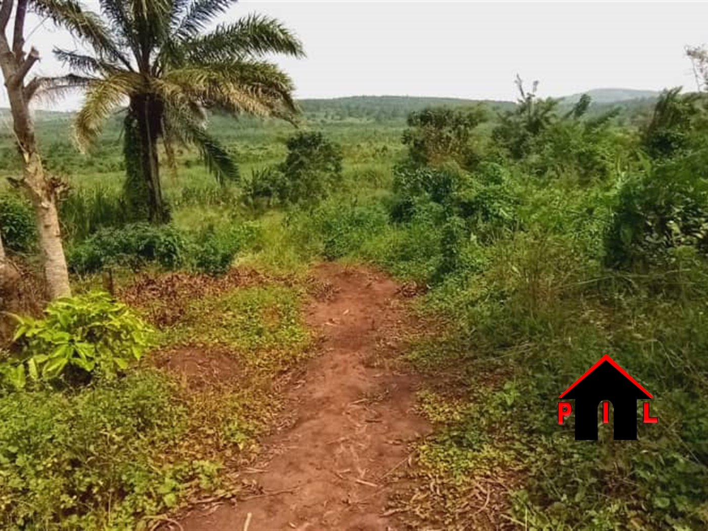 Agricultural Land for sale in Kisoga Mukono