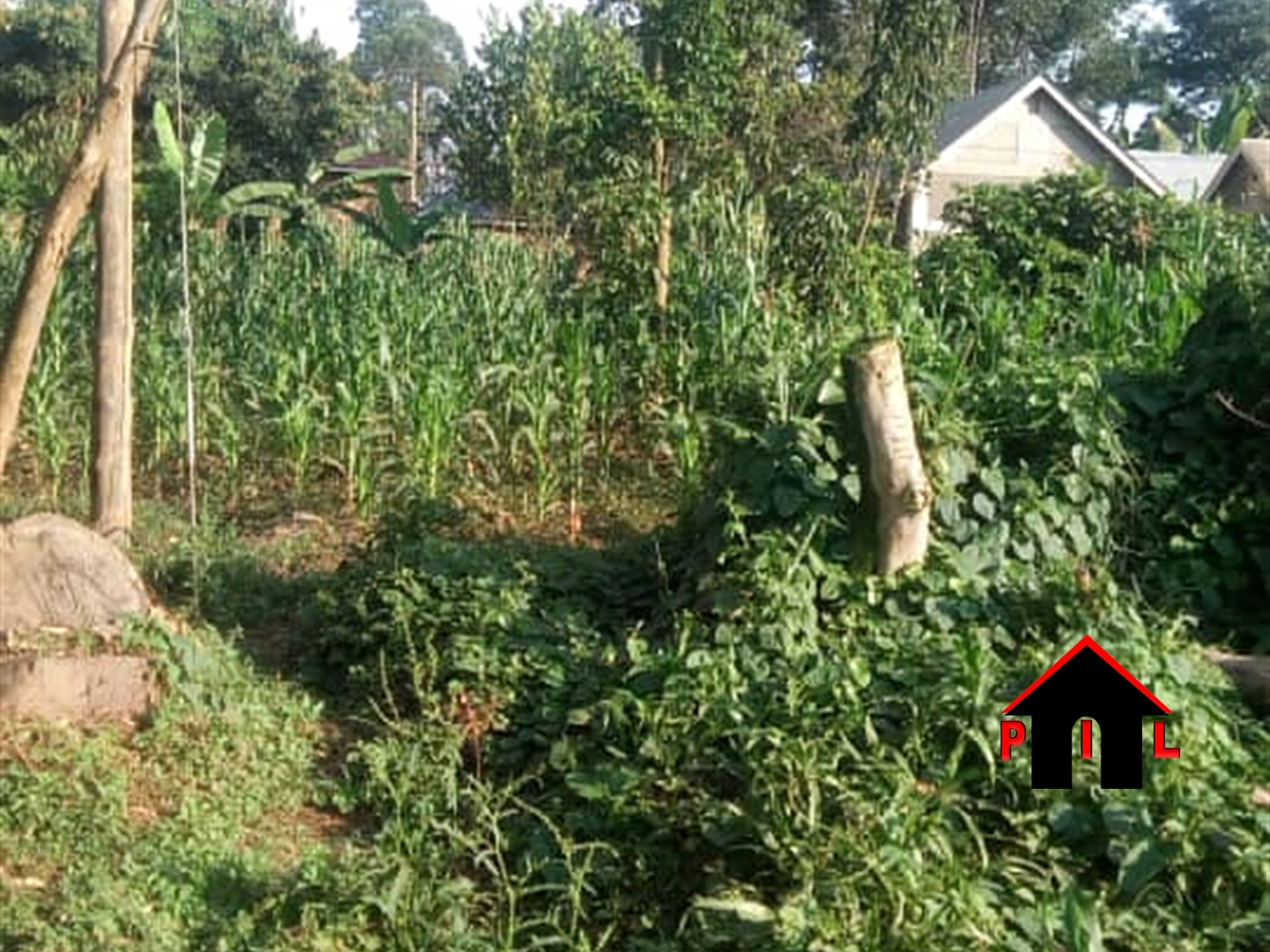 Residential Land for sale in Maganjo Wakiso