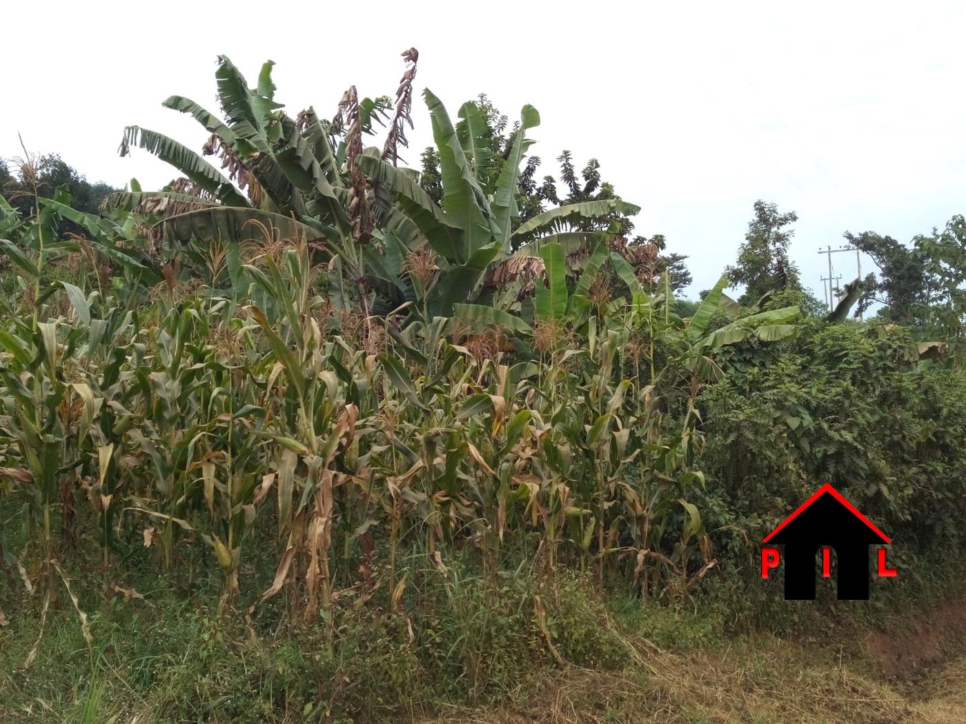 Residential Land for sale in Lukwango Wakiso
