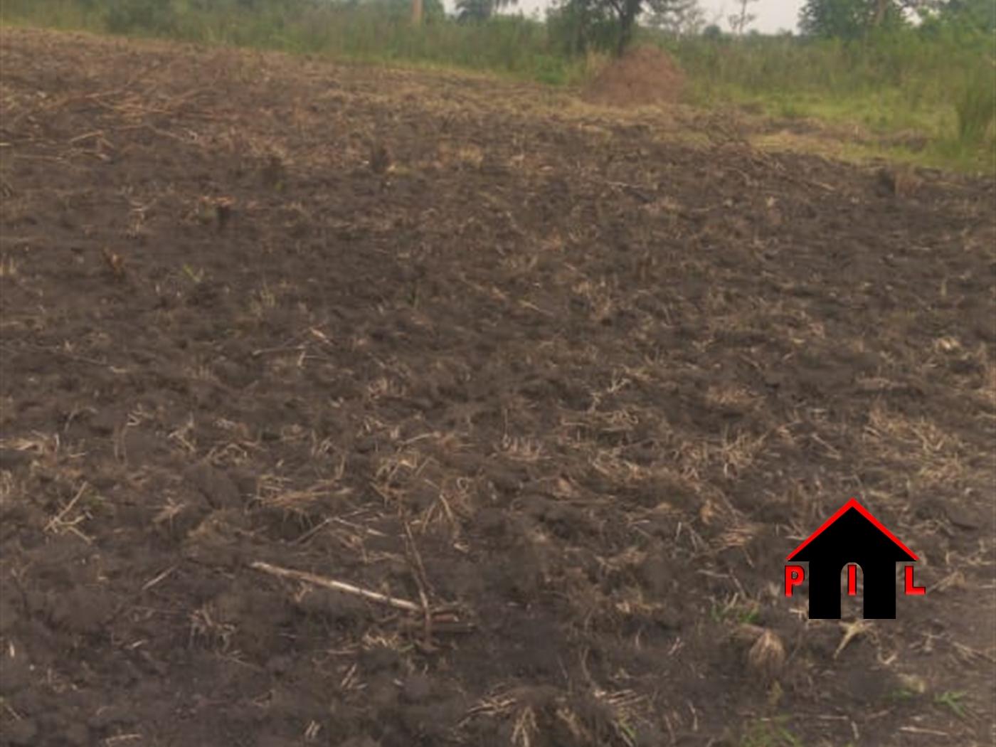 Residential Land for sale in Buwaya Wakiso