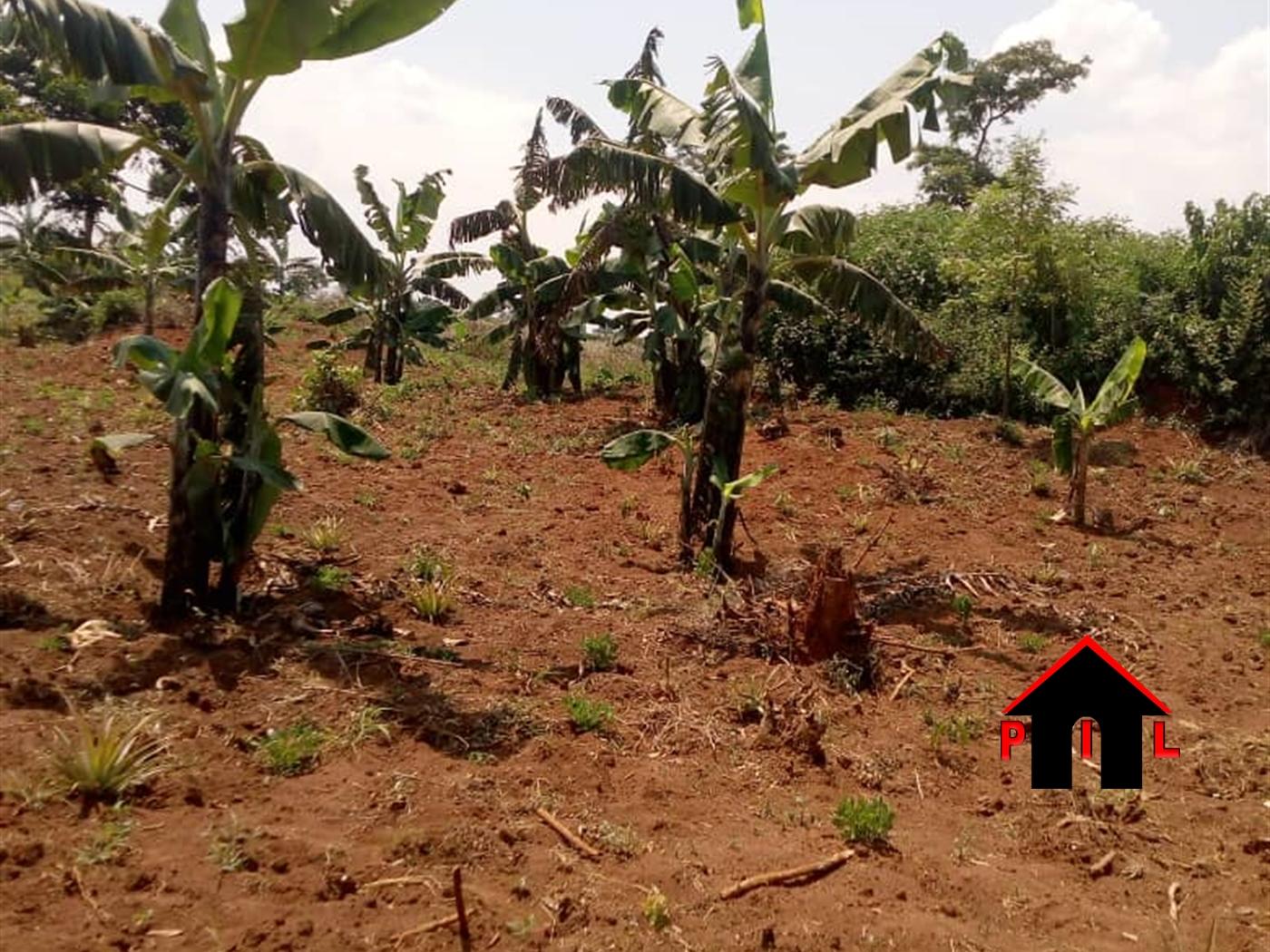 Residential Land for sale in Kitti Wakiso
