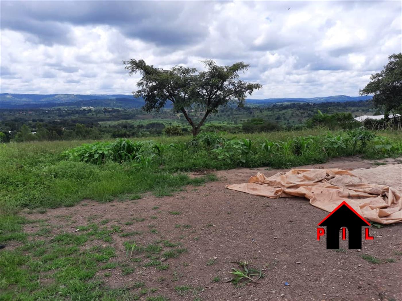 Residential Land for sale in Busunju Wakiso