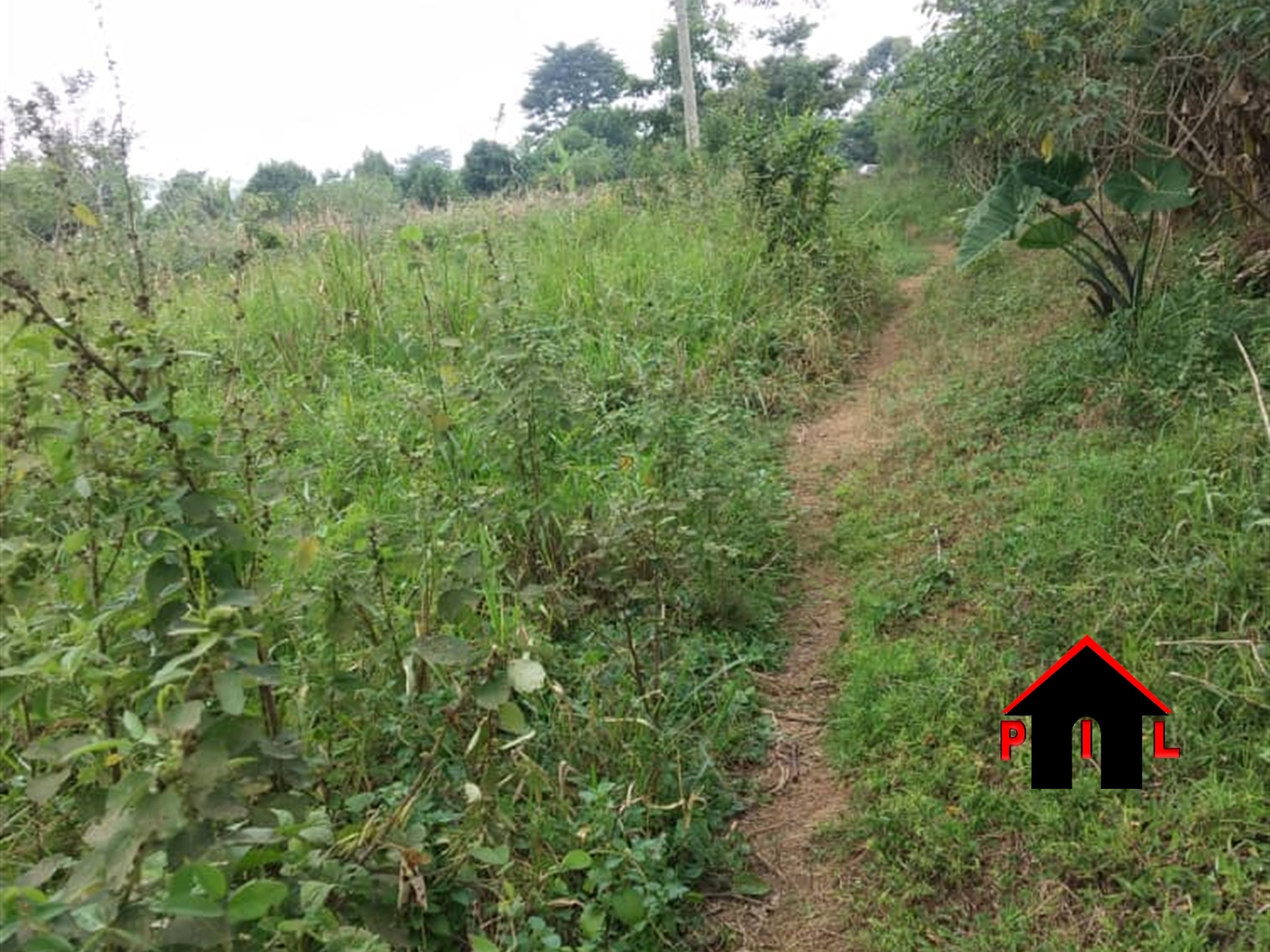 Residential Land for sale in Kigowa Kampala