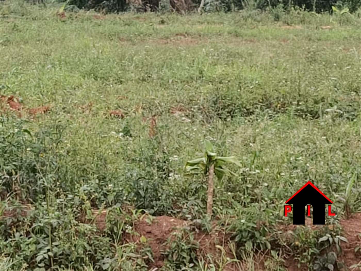 Agricultural Land for sale in Bukuya Kiboga