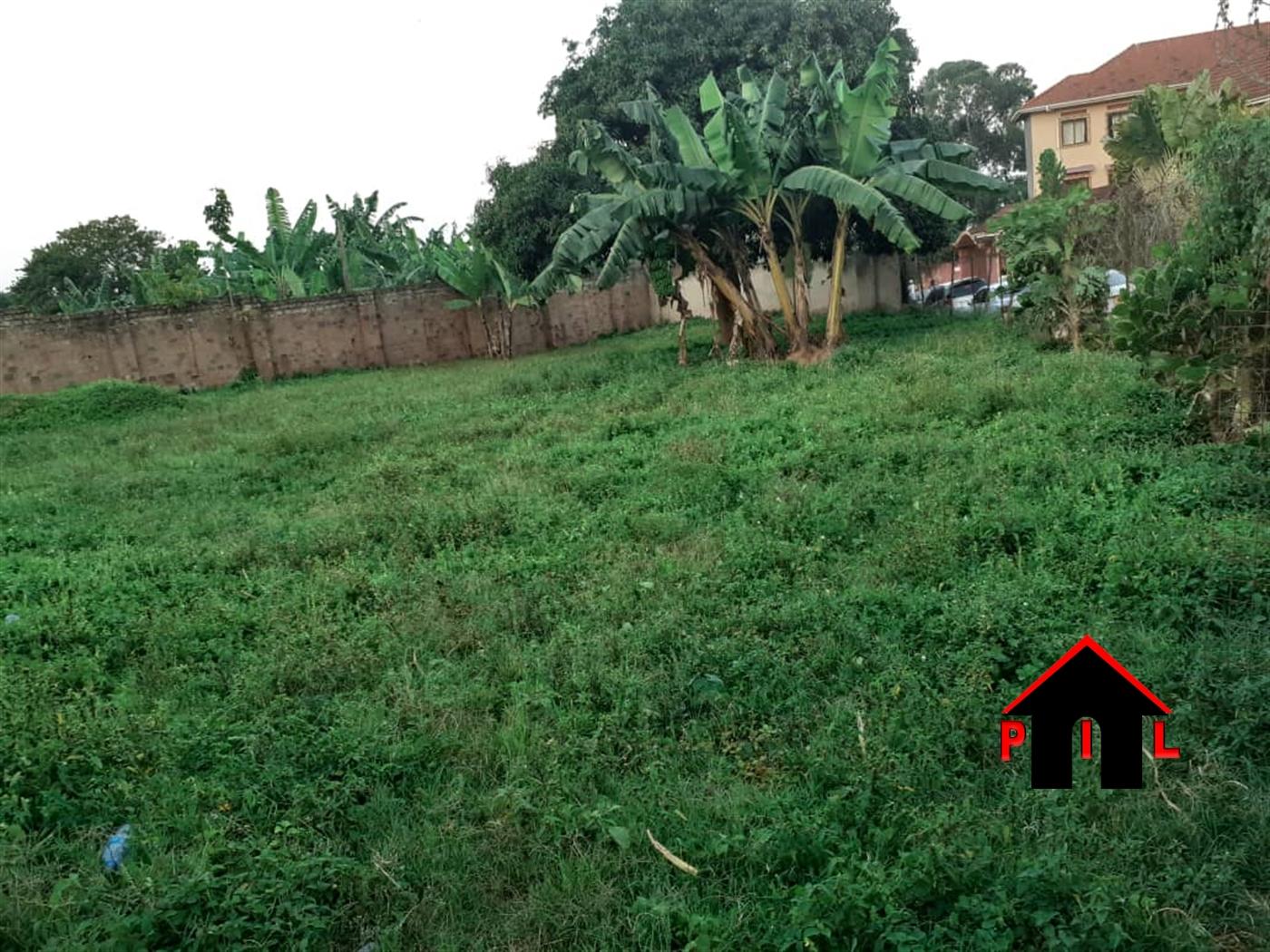Agricultural Land for sale in Kyankwanzi Masindi
