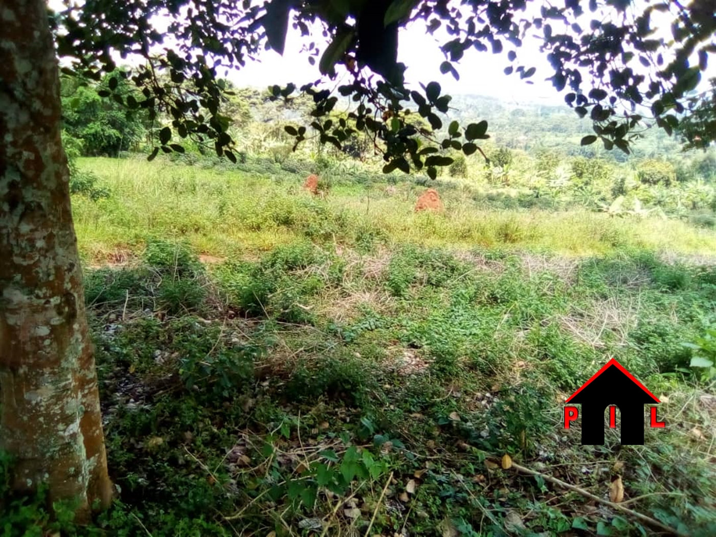 Residential Land for sale in Muynega Kampala