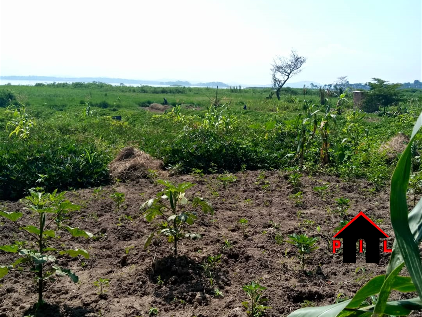 Commercial Land for sale in Muyenga Kampala