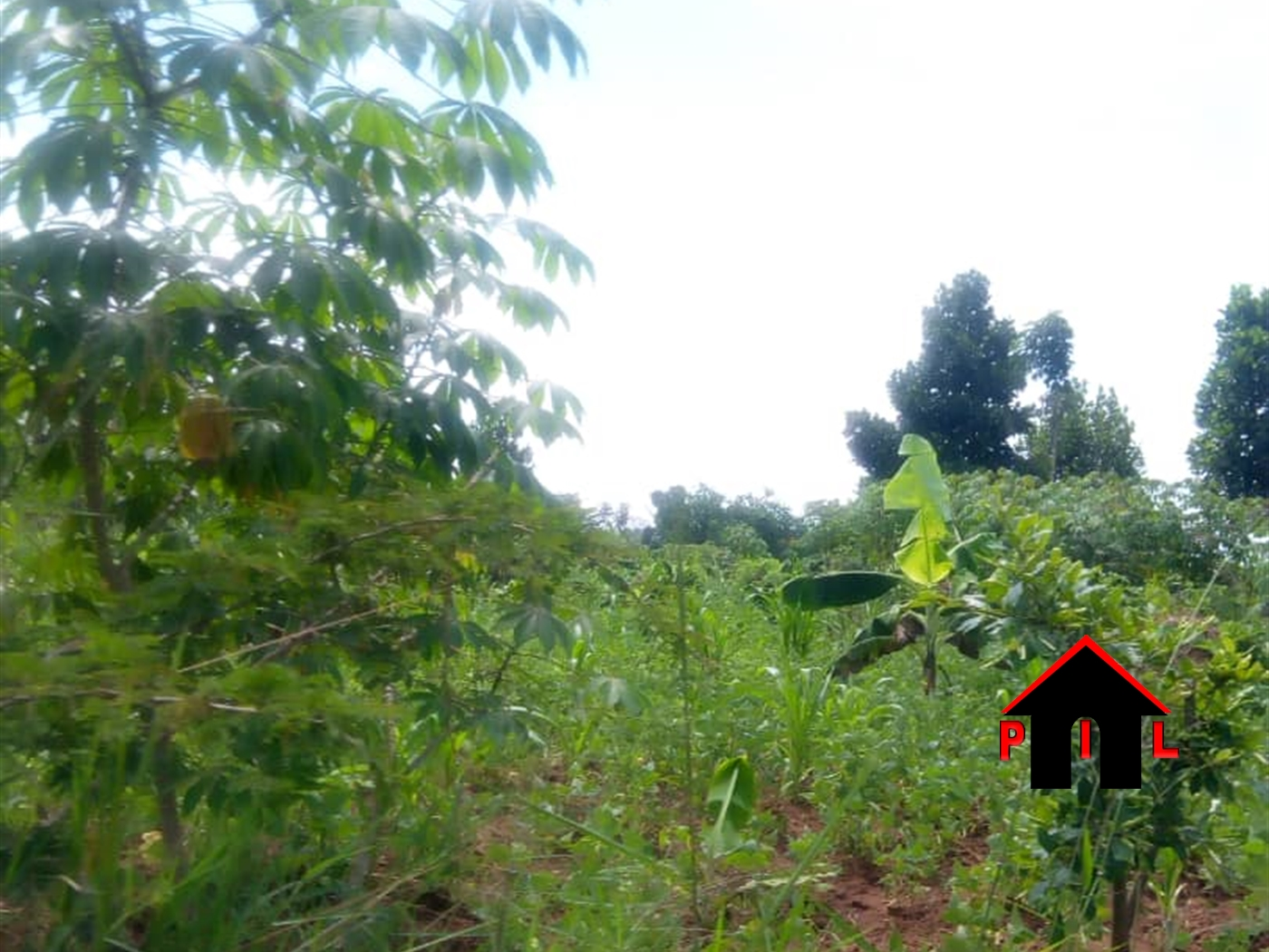 Commercial Land for sale in Bbunga Kampala