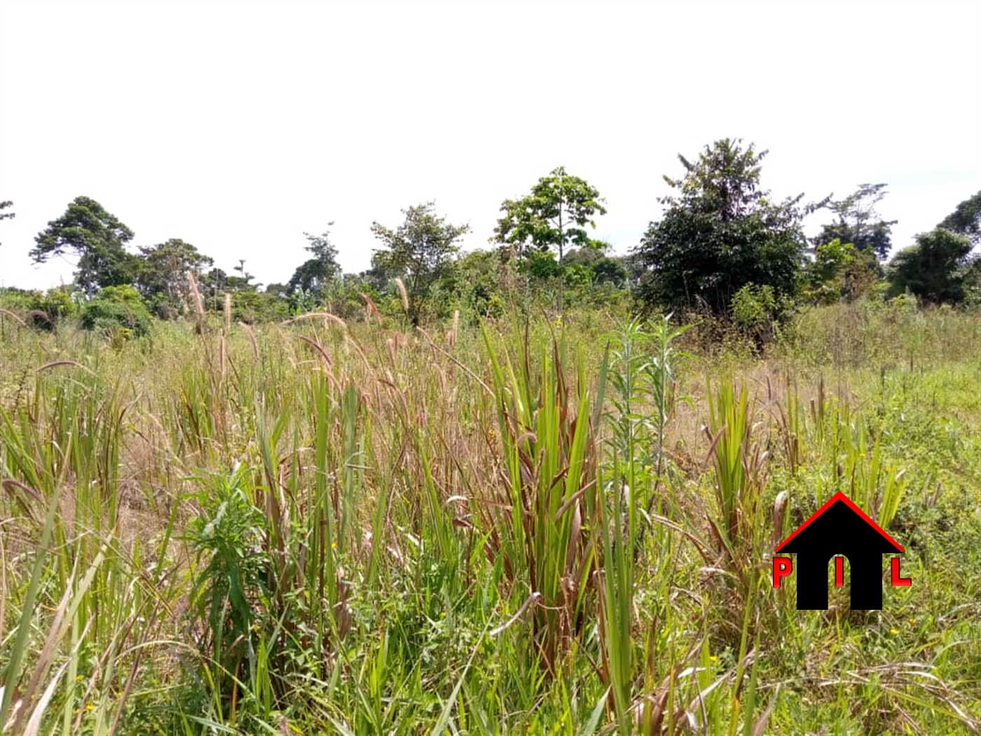Residential Land for sale in Kirowooza Mukono