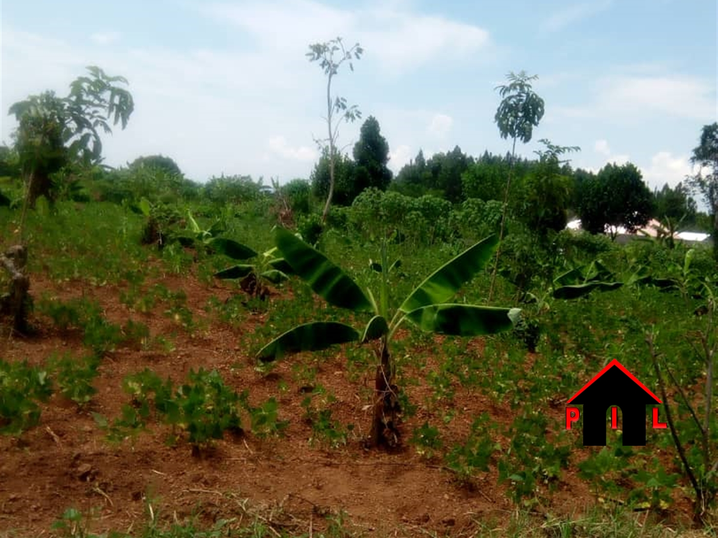 Residential Land for sale in Lule Mukono