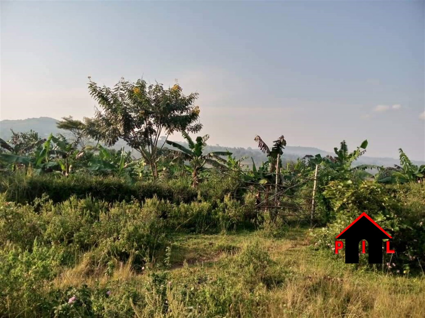 Commercial Land for sale in Bbaale Kayunga