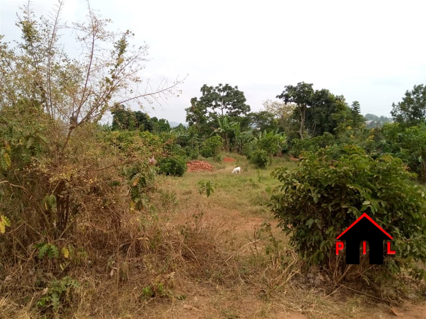 Residential Land for sale in Mpunge Mukono