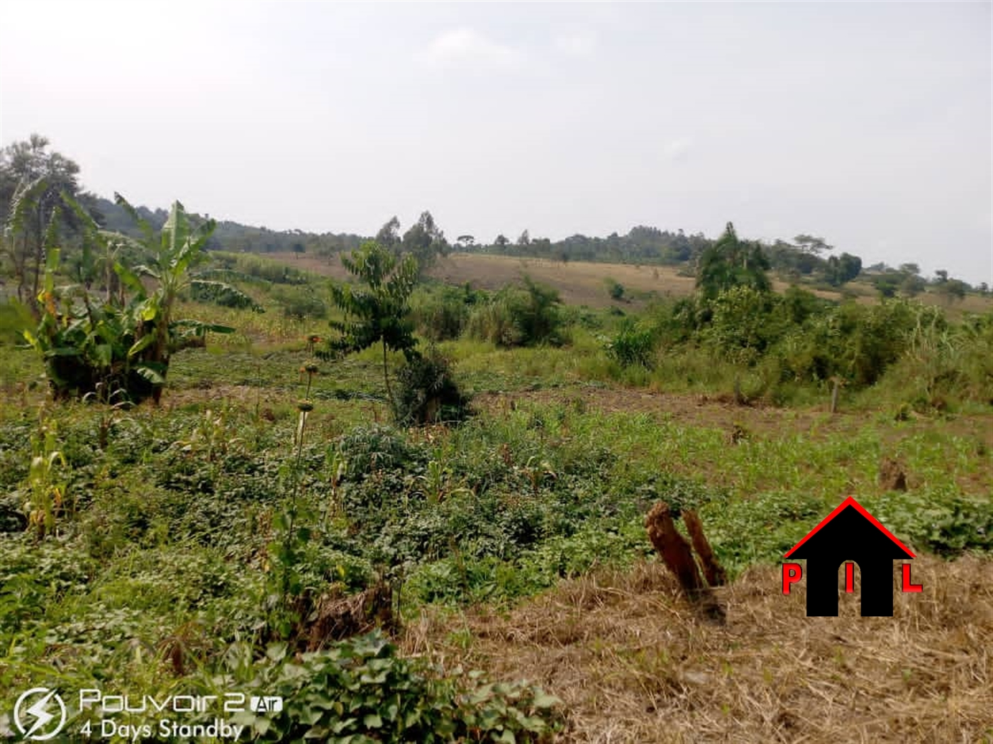 Agricultural Land for sale in Nakabululu Luwero