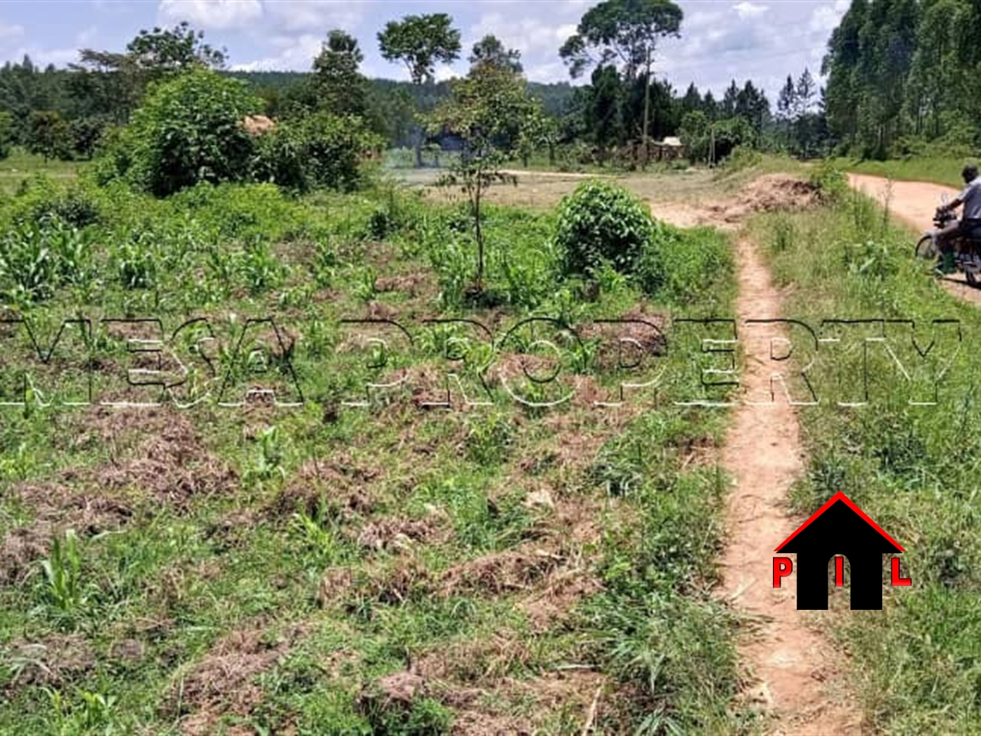 Agricultural Land for sale in Bulera Mityana
