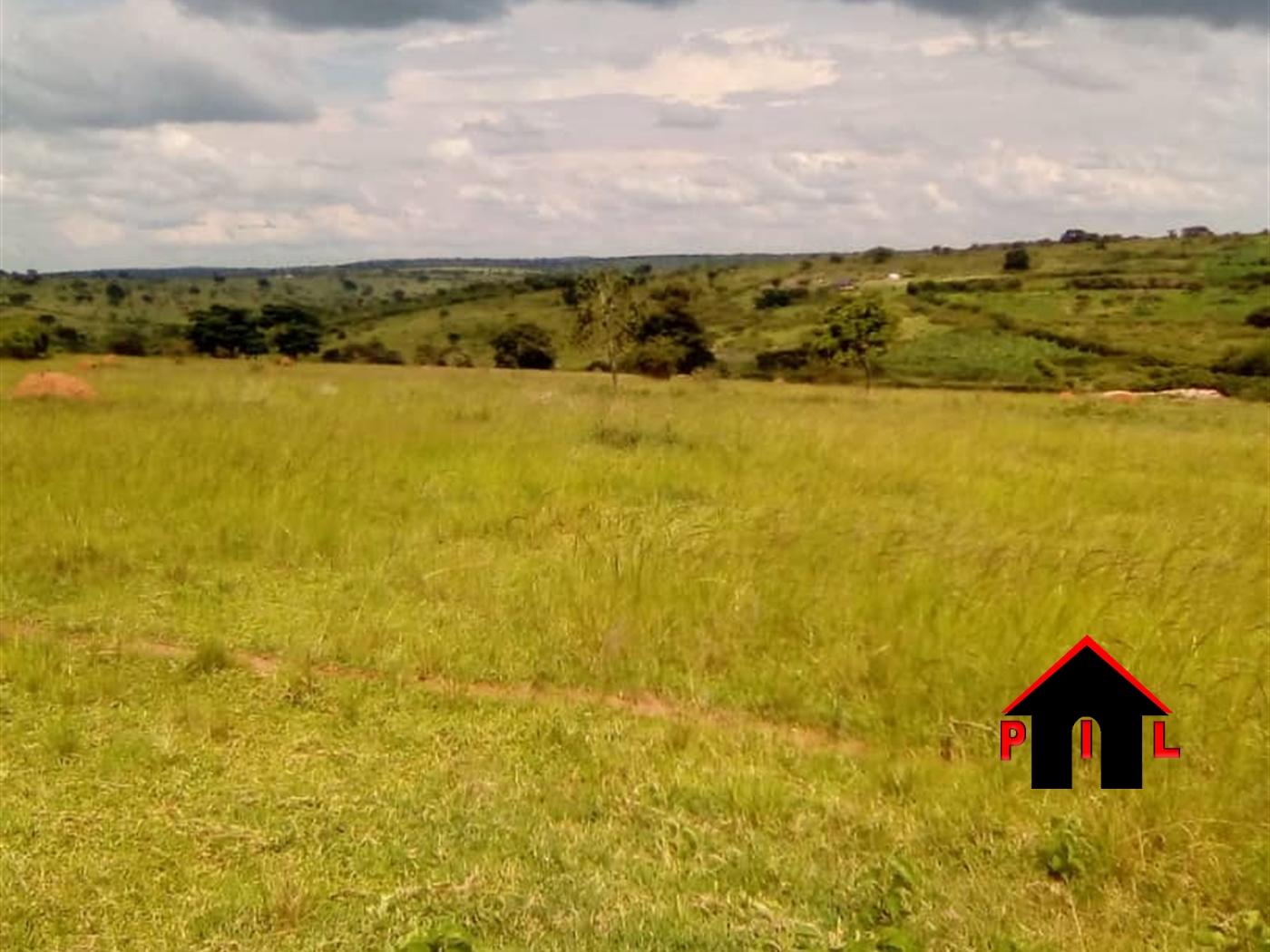 Agricultural Land for sale in Kikatsi Kiruhura