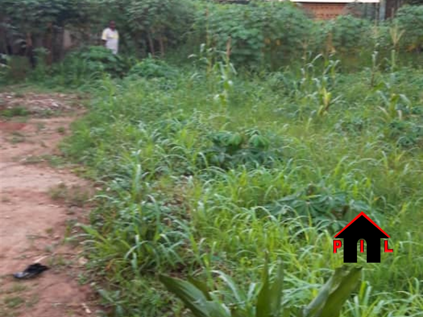 Residential Land for sale in Kayabwe Mpigi