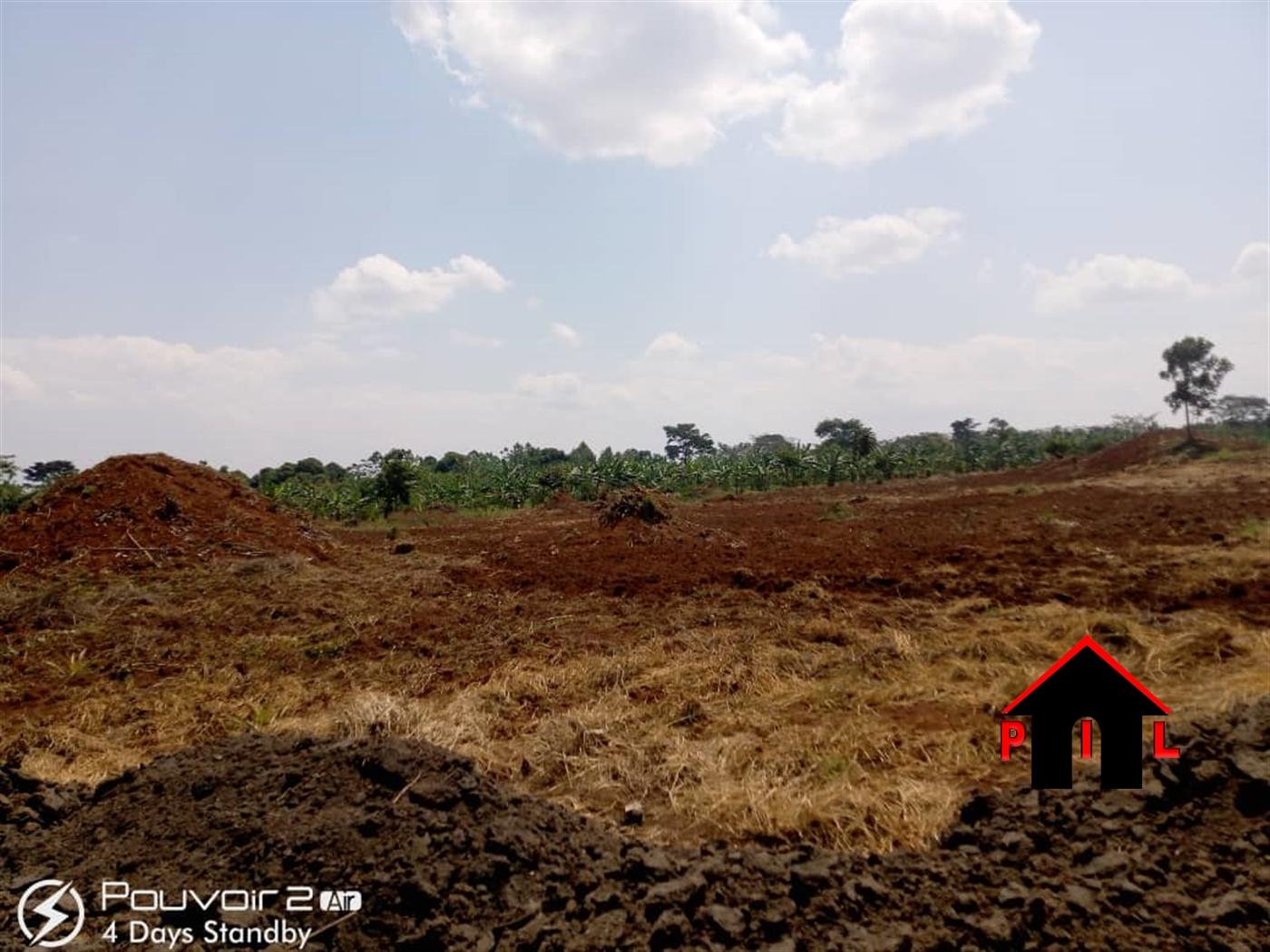 Agricultural Land for sale in Lukaya Kalungu