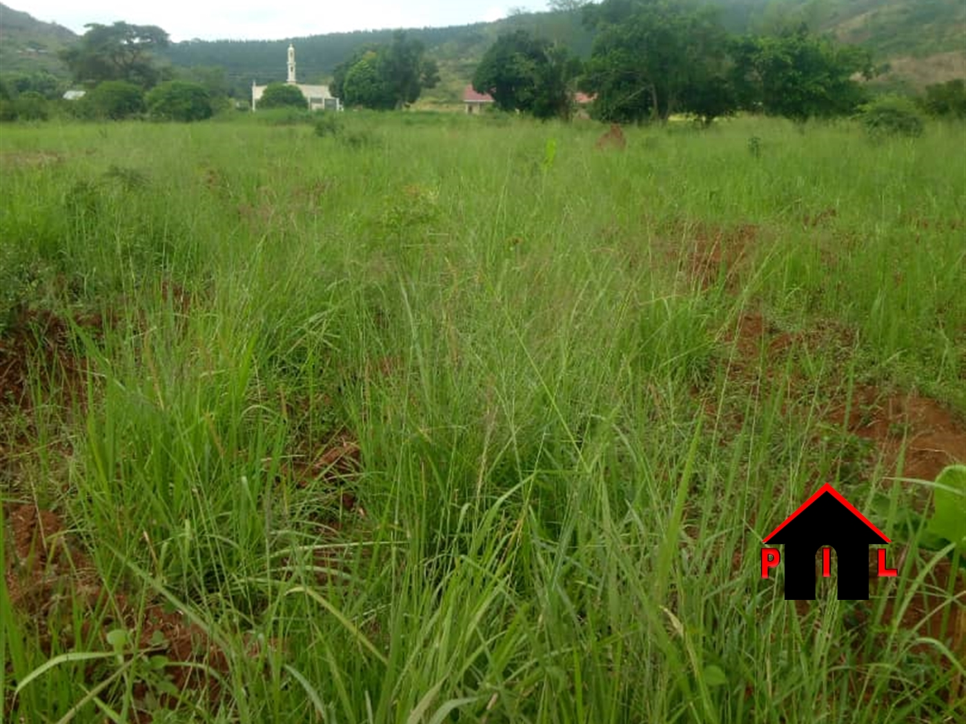 Agricultural Land for sale in Kabulasoke Butambala