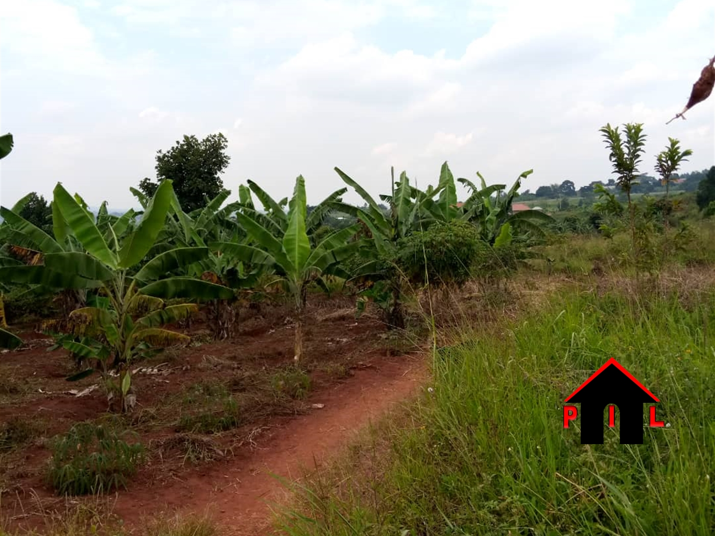 Agricultural Land for sale in Matongo Butambala