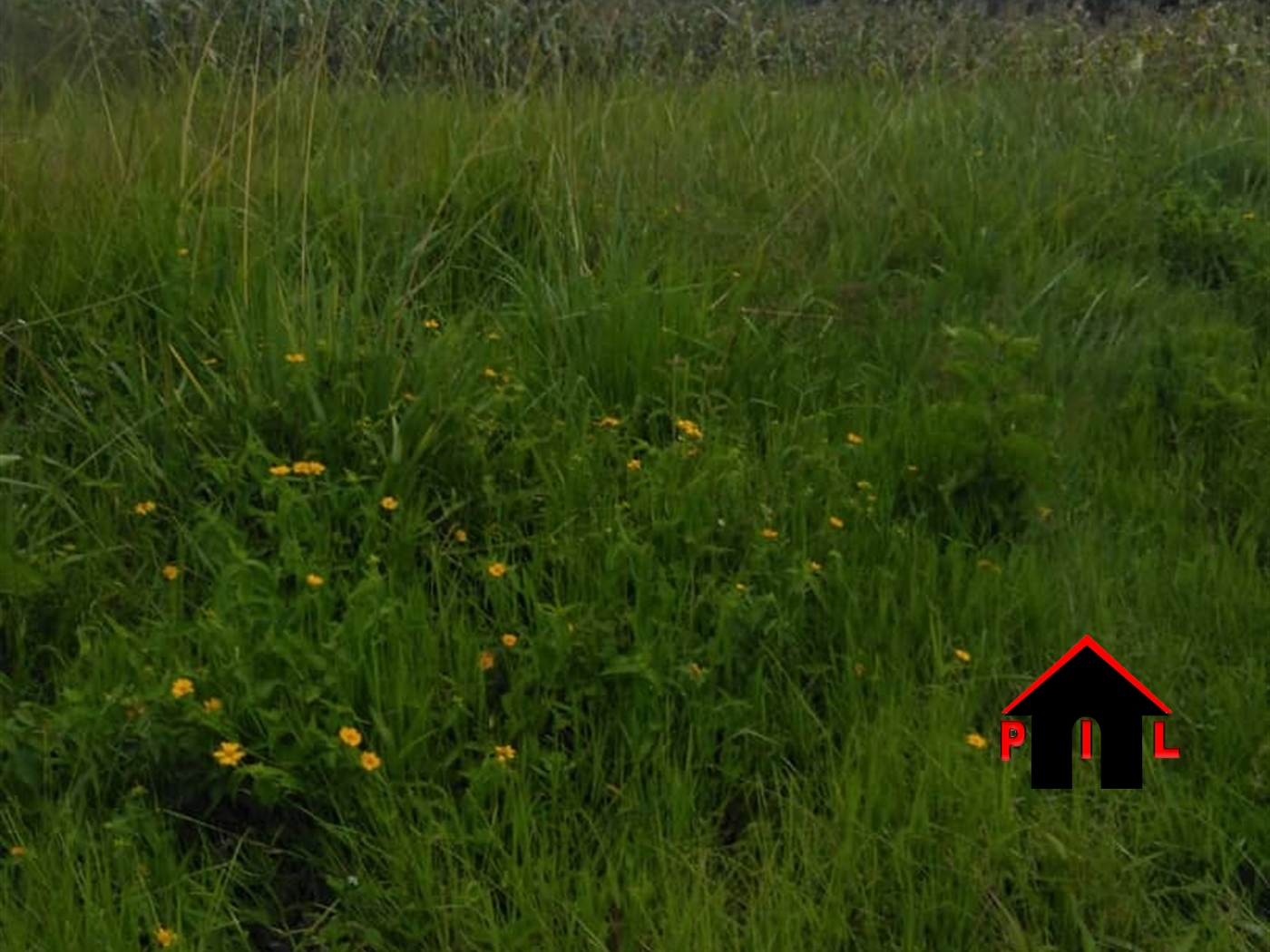 Residential Land for sale in Gobero Wakiso