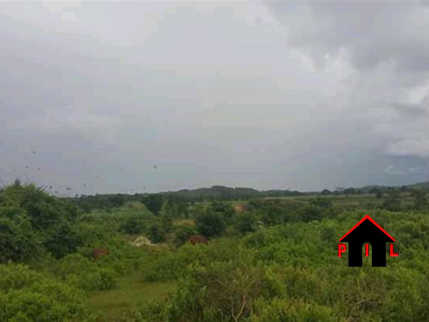 Agricultural Land for sale in Kakira Jinja