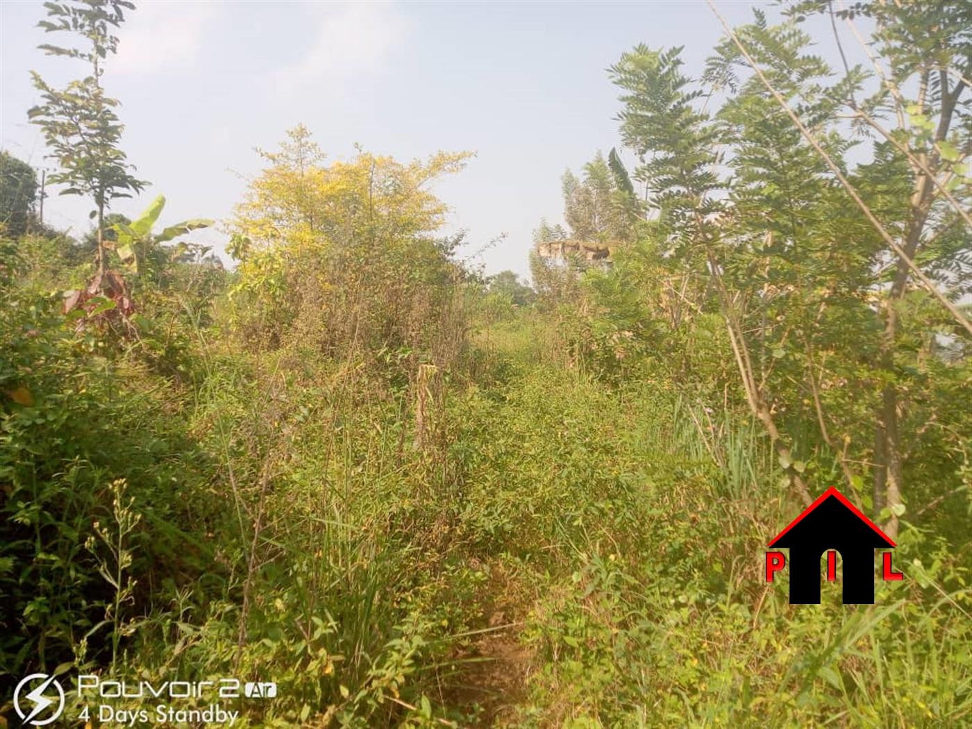 Agricultural Land for sale in Kiwenda Wakiso