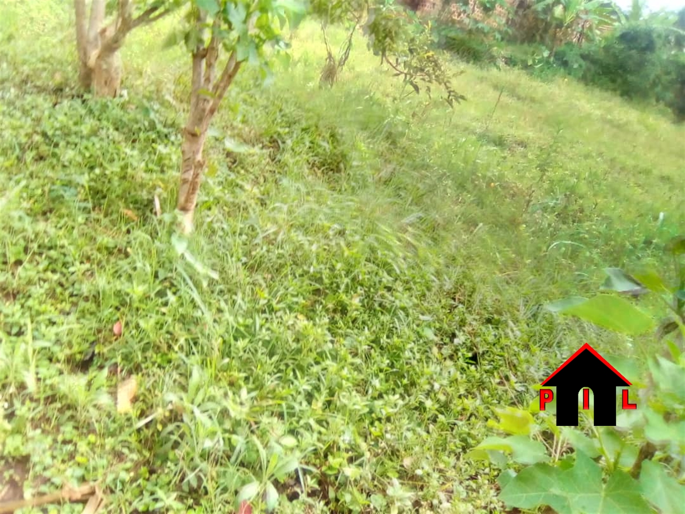 Residential Land for sale in Kyera Mbarara