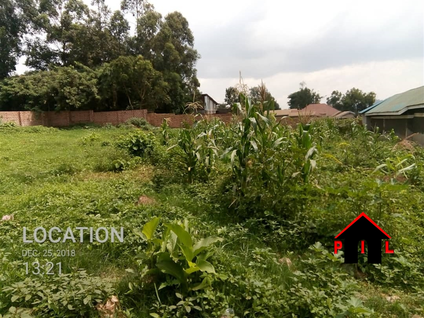 Residential Land for sale in Kalule Luwero