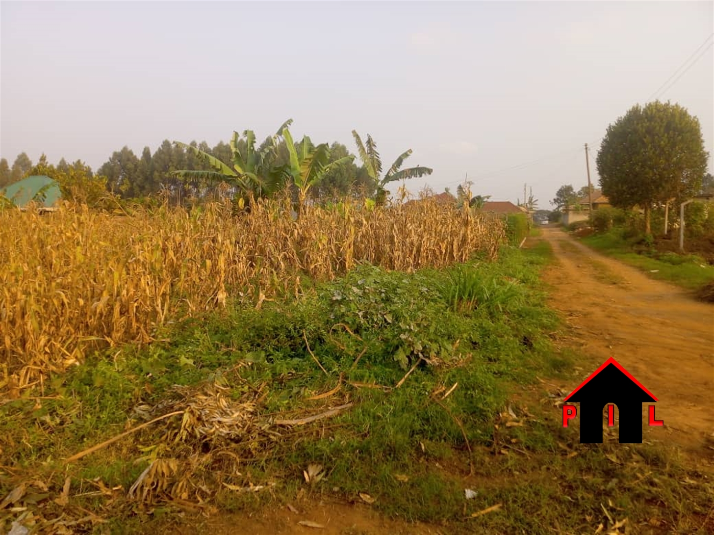 Agricultural Land for sale in Bububi Luwero