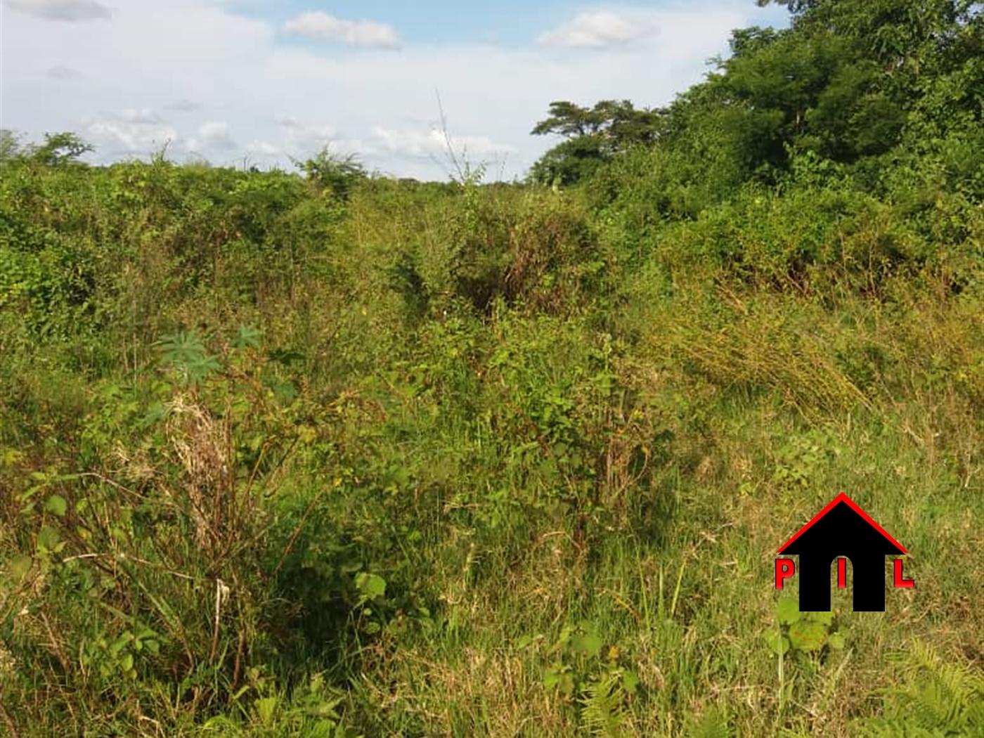 Residential Land for sale in Nakirima Wakiso