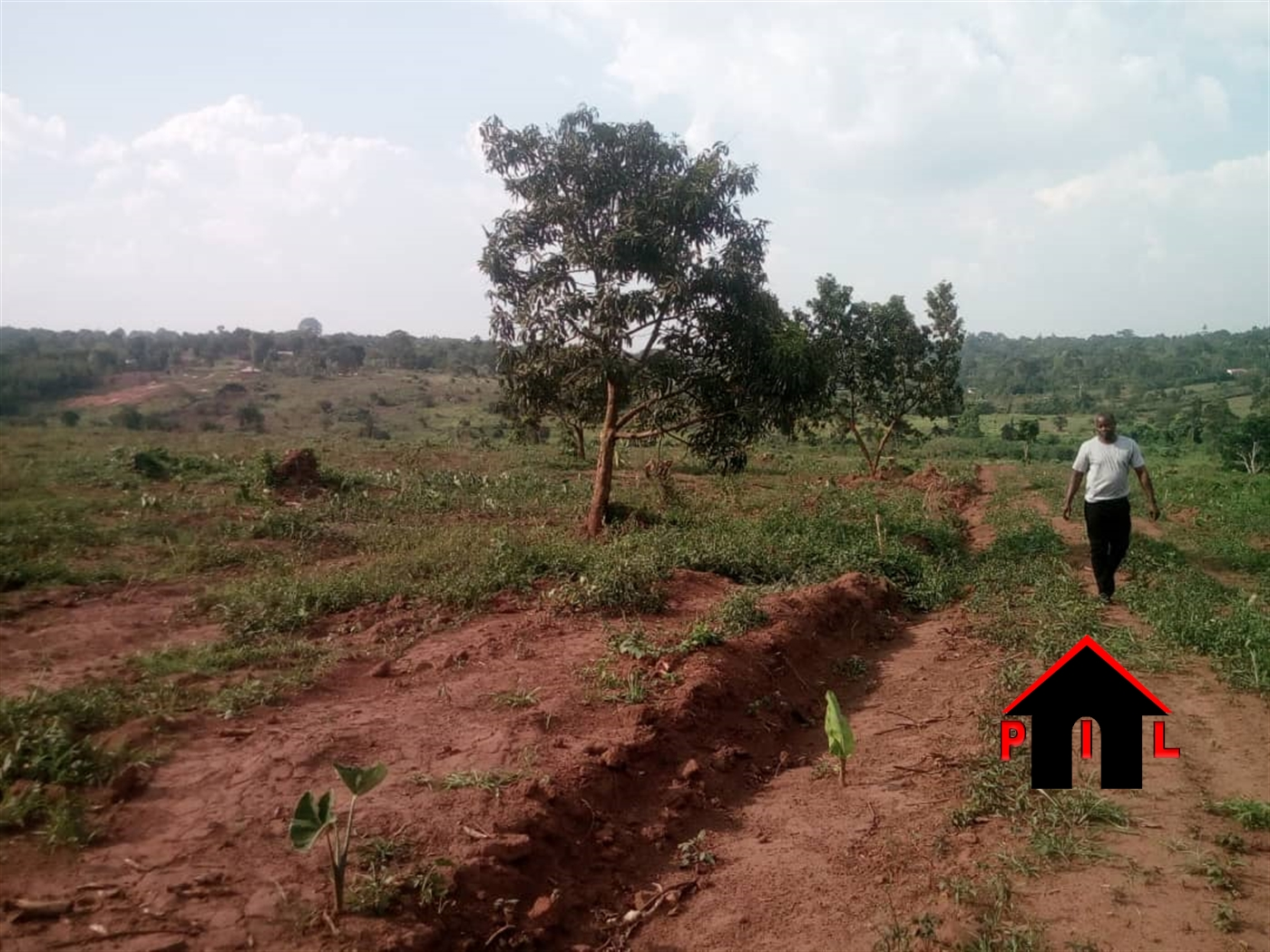 Agricultural Land for sale in Kyotela Masaka