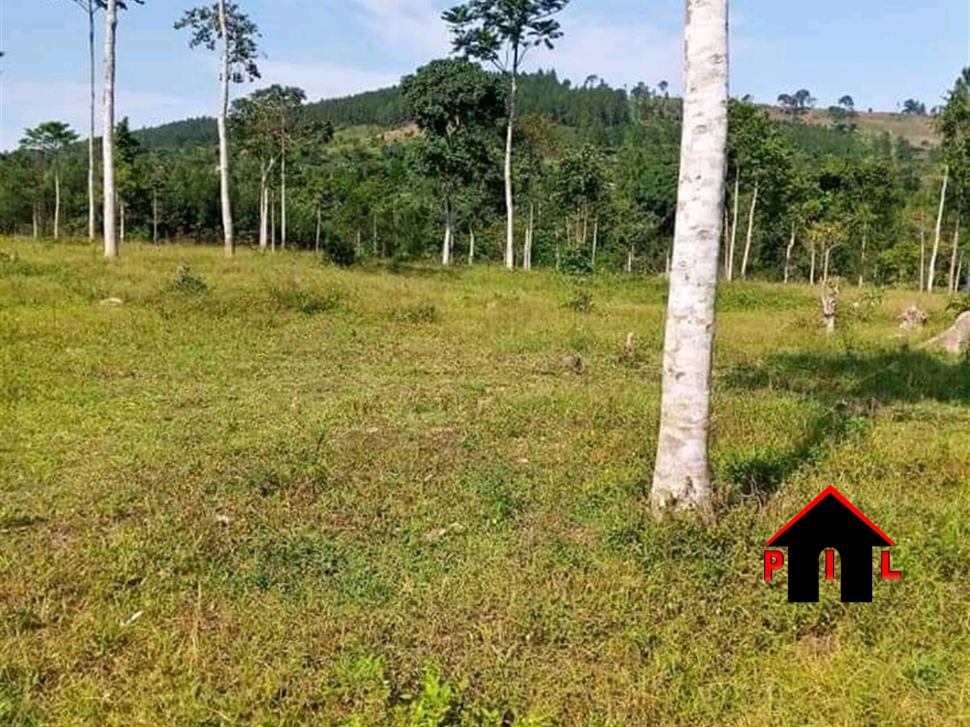 Agricultural Land for sale in Jazza Mityana