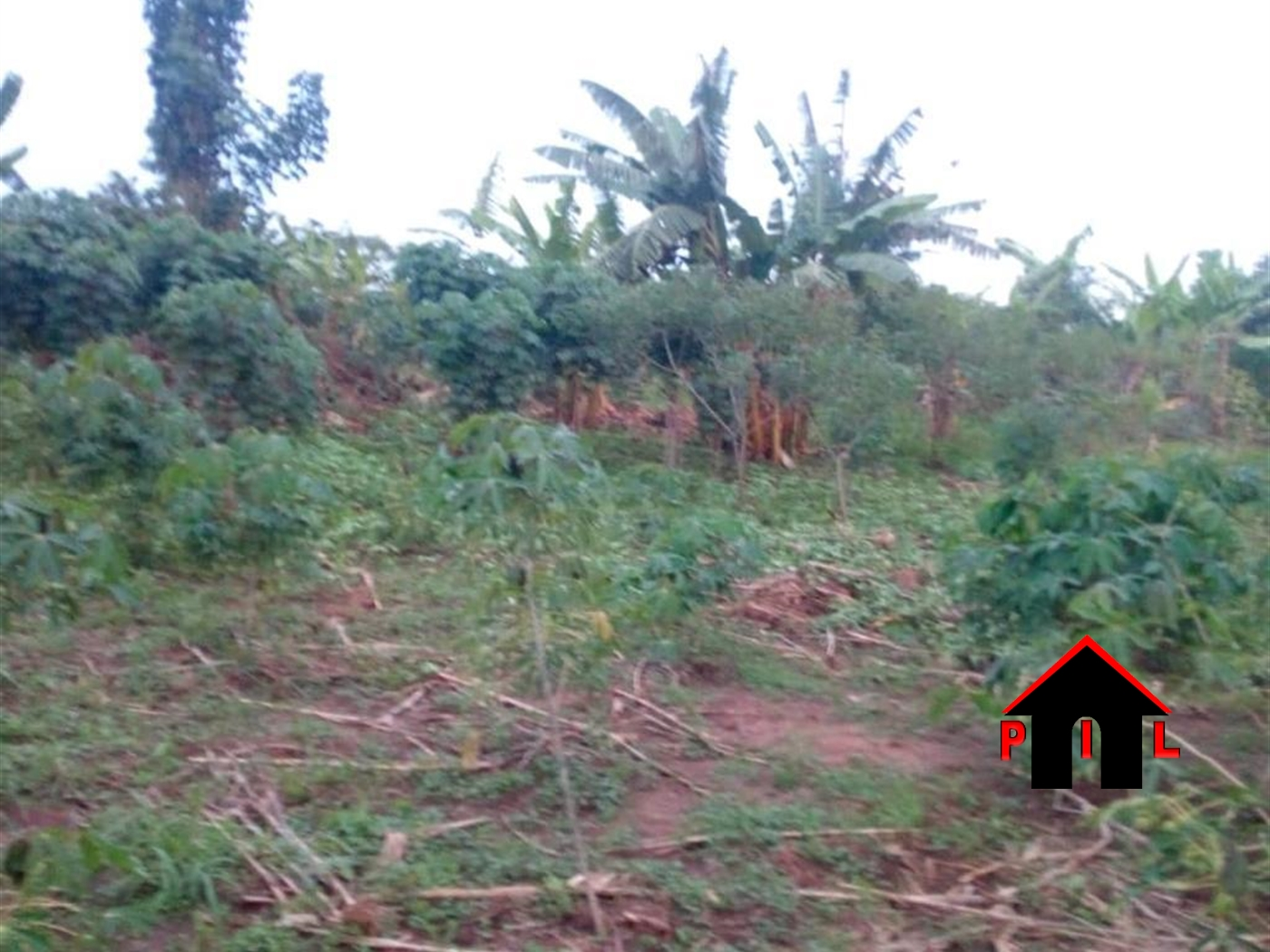 Agricultural Land for sale in Gombe Wakiso