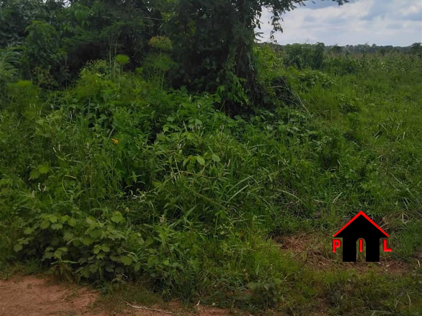 Agricultural Land for sale in Kyanamukaaka Masaka