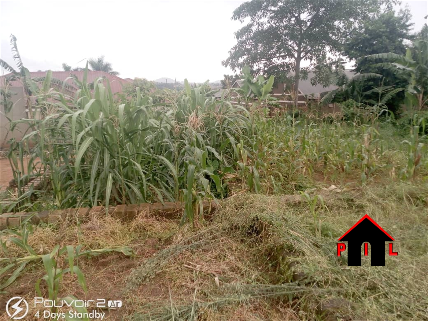 Agricultural Land for sale in Mpambire Mpigi