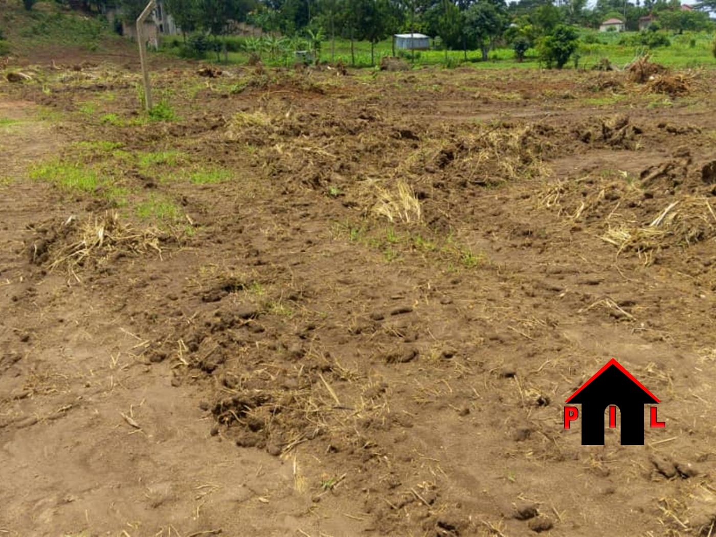 Agricultural Land for sale in Kifuutabuko Masaka