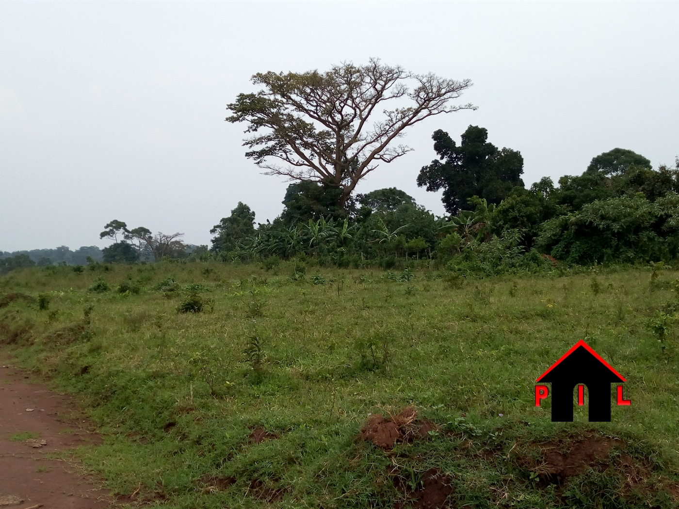 Agricultural Land for sale in Busiika Wakiso