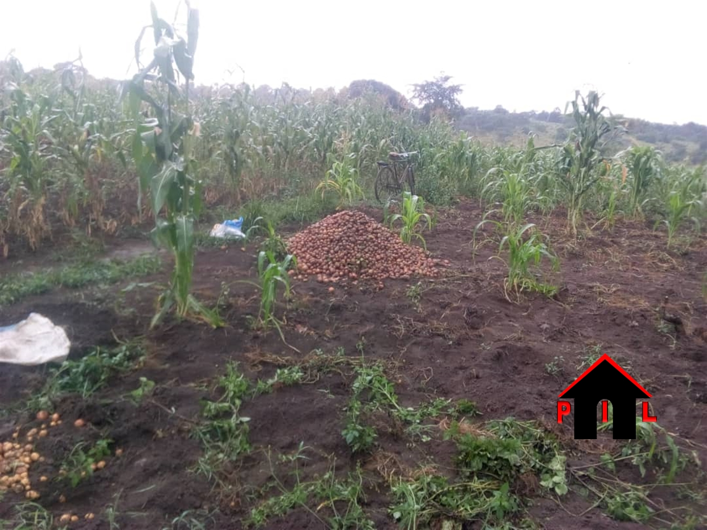 Residential Land for sale in Maya Wakiso