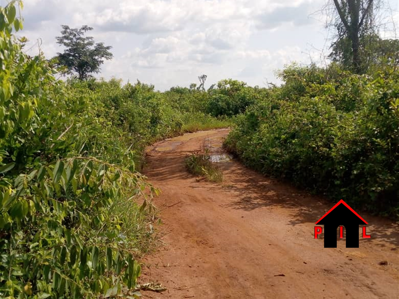 Agricultural Land for sale in Lwamuwungu Nakaseke