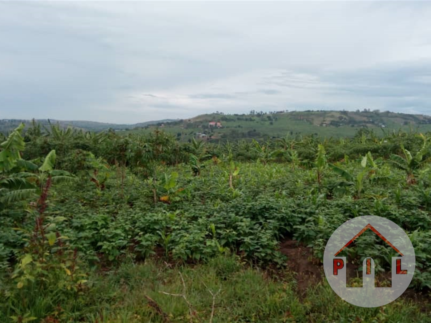 Multi Purpose Land for sale in Wakatayi Luwero