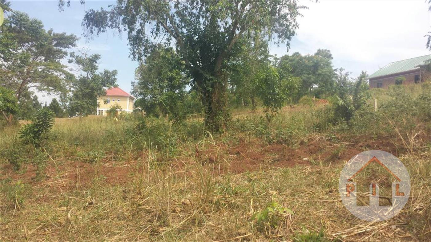 Residential Land for sale in Walusubi Wakiso