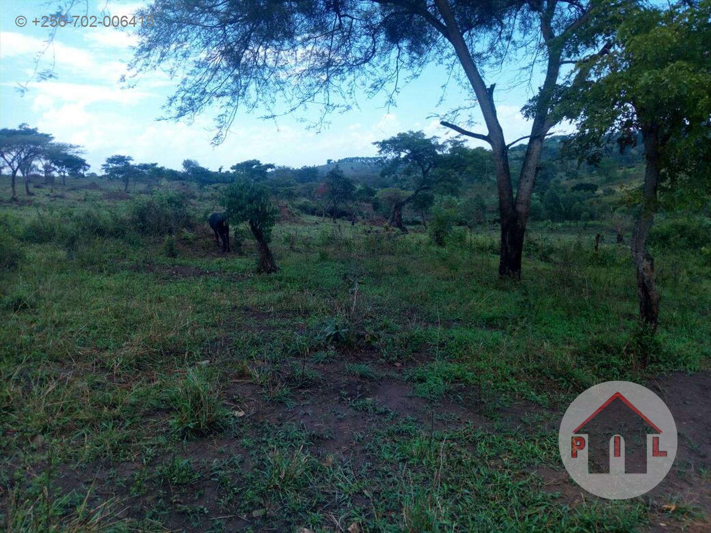 Residential Land for sale in Namuwongo Kampala
