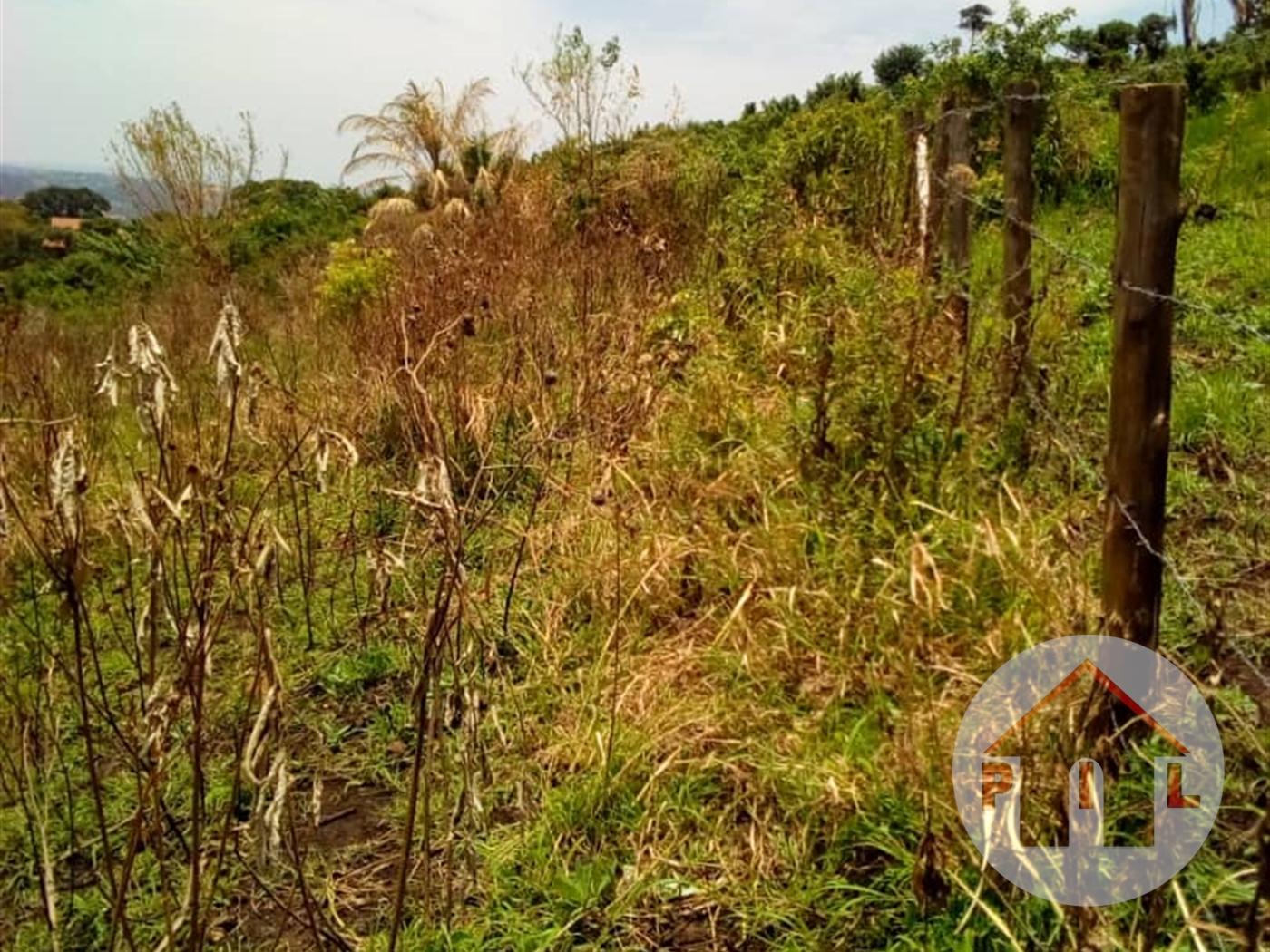 Multi Purpose Land for sale in Bwebajja Wakiso