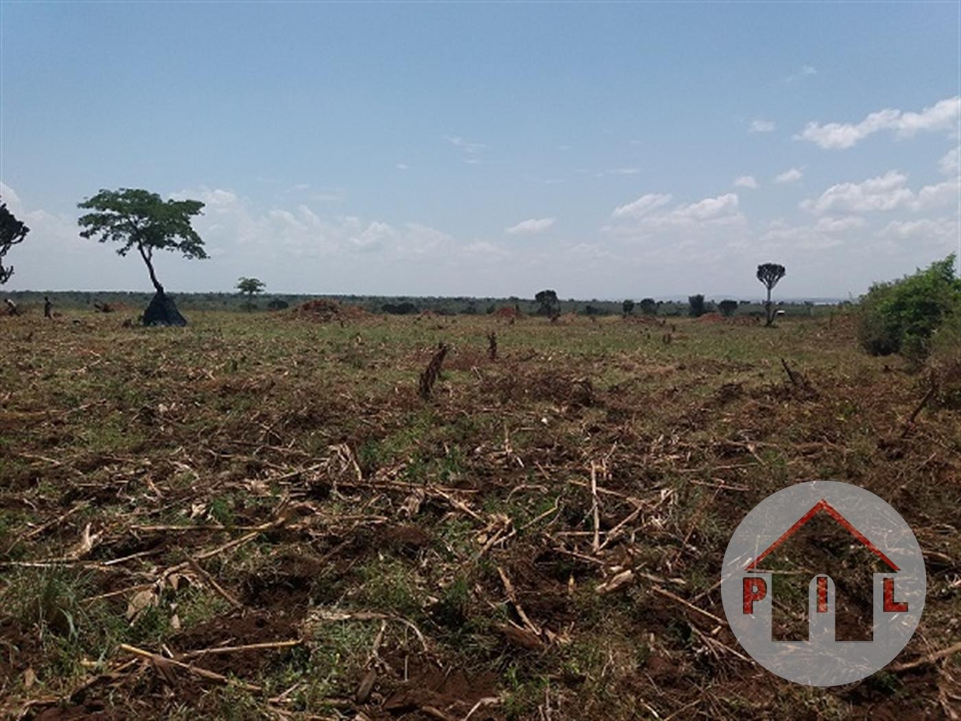 Multi Purpose Land for sale in Kyai Mityana